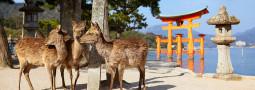 Itsukushima, la isla santuario en la que conviven hombres y dioses