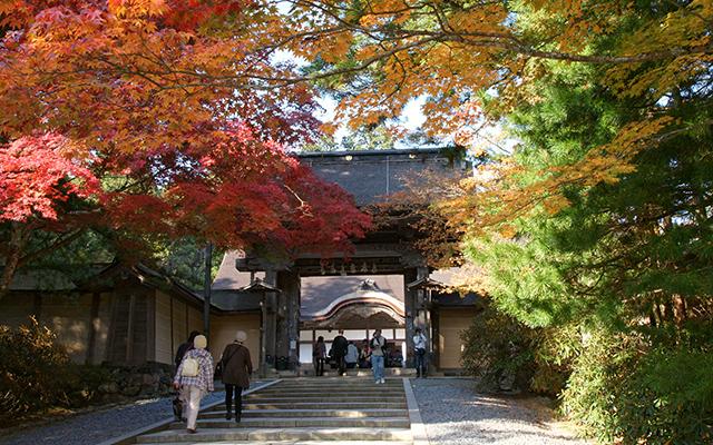 Hojas de otoño (Momiji) en Kongōbu-ji, Monte Koya. Declarado Patrimonio de la Humanidad