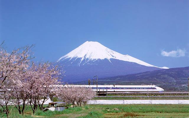 El Monte Fuji, las flores de cerezo y el shinkansen en primer plano. Los tres son icónicos de Japón