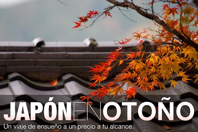 Viaje a Japón Otoño de 2012 Noviembre precio económico