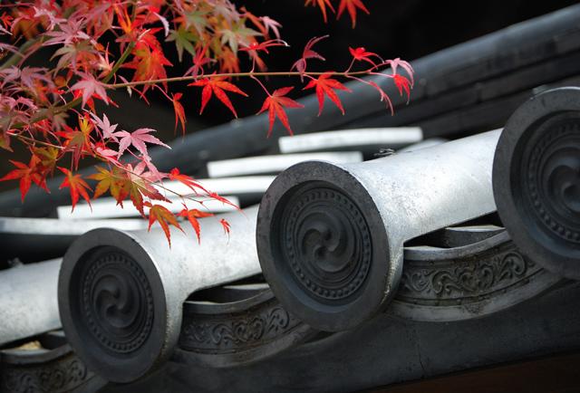 Viaje a Japón en otoño de 2012 al mejor precio